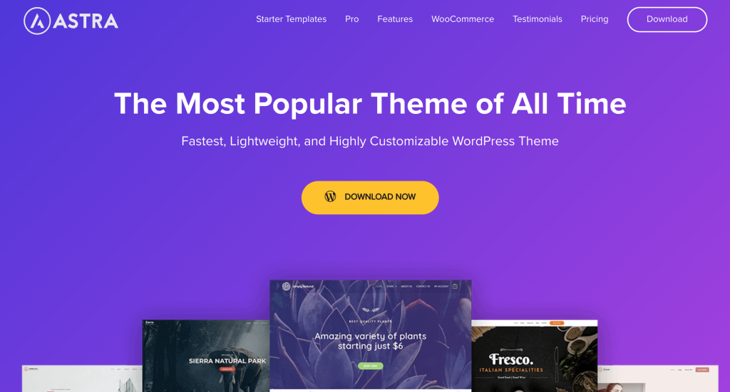 Astra WordPress Theme for Health and Wellness Websites